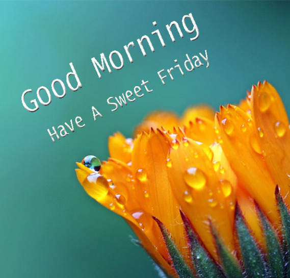 have a sweet friday